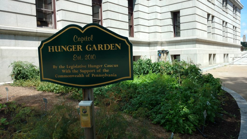 The Hunger Garden